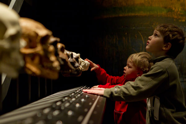 Children looking at skulls. Photo: Mikael Axelsson