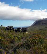 Landscape in South Africa. Photo: Annika Bengtson