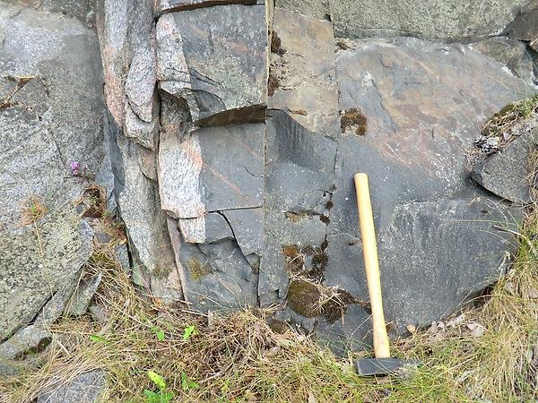 Mafic dyke belonging to the Herräng dyke swarm intruding granitic gneiss at Herräng, Uppland.