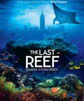 Affisch The Last Reef