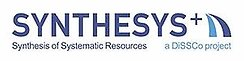Logo SYNTHESYS
